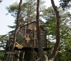長松園森林公園 町民の森